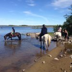 Linguistique et equitation Westport